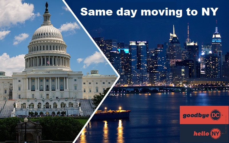 moving company from dc to nyc